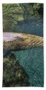 West Indian Manatee Beach Towel