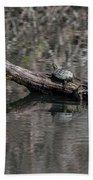 Western Painted Turtles On A Log Beach Towel