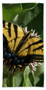 Western Tiger Swallowtail 2 Beach Towel