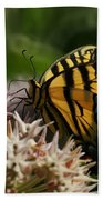 Western Tiger Swallowtail Beach Towel