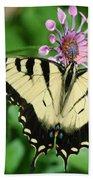 Western Tiger Swallowtail Beach Towel