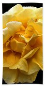 Wet Yellow Rose II Beach Towel