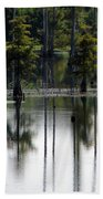 Wetland Beach Towel