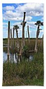 Wetland Palms Beach Towel
