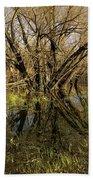 Wetlands Mirror Reflection Beach Towel