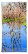 Wetlands Viewing Area In Chatfield State Park Beach Towel