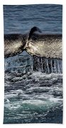 Whale Tail Beach Towel by Andrea Platt