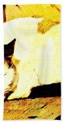 What Do Cats Dream Of Beach Sheet