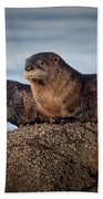 Whats For Dinner Beach Towel