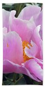 What's In A Name - Bowl Of Beauty Peony Beach Towel