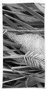 Wheat And Ice Beach Towel
