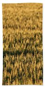 Wheat Beards Beach Towel