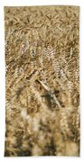 Wheat In The Wind Beach Towel