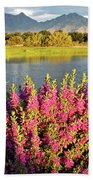 When The Rains Come In The Desert So Do The Blooms Beach Towel
