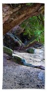 Where The Forest Meets The Sea Beach Towel