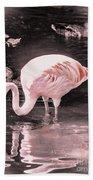 Whisper Pink Flamingo Beach Towel
