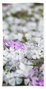 White And Pink Flowers At Botanic Garden In Blue Mountains Beach Sheet