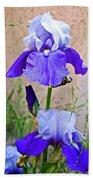 White And Purple Irises At Pilgrim Place In Claremont-california- Beach Towel