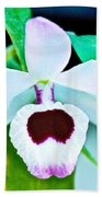 White And Purple Orchid In Greenhouse At Pilgrim Place In Claremont-california Beach Towel