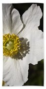 White Anemone Beach Towel