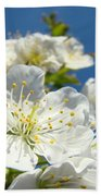 White Blossoms Art Prints Spring Tree Blossoms Canvas Baslee Troutman Beach Towel