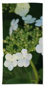 White Bridal Wreath Flowers Beach Sheet