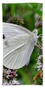 White Butterfly At The Good Earth Market Beach Towel