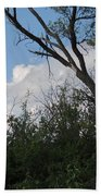 White Clouds With Trees Beach Towel