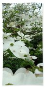 White Dogwood Flowers 6 Dogwood Tree Flowers Art Prints Baslee Troutman Beach Towel