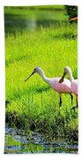 White Egret And Roseate Spoonbills Beach Towel