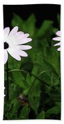 White Flowers In The Garden Beach Towel