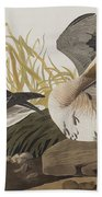 White-fronted Goose Beach Towel