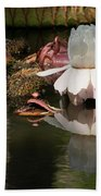 White Giant Water Lily Beach Towel