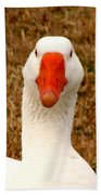 White Goose Close Up 1 Beach Sheet