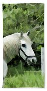 White Horse In A Green Pasture Beach Towel