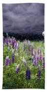 White Horse In A Lupine Storm Beach Towel