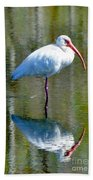 White Ibis And Reflection Beach Towel