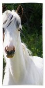 White Indian Pony Beach Towel