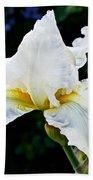 White Iris At Pilgrim Place In Claremont-california Beach Towel