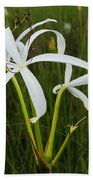 White Lilies In Bloom Beach Towel