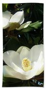 White Magnolia Flowers 01 Beach Sheet