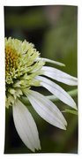 White Milkshake Coneflower Beach Towel