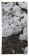 White Moss Beach Towel