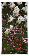 White Narcissus With Pink English Daisies In A Spring Garden Beach Towel