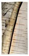 White Paper Birch Tree Bark Beach Towel