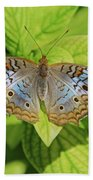 White Peacock Butterfly I Beach Towel