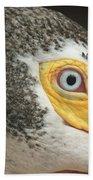 White Pelican Eye Beach Towel