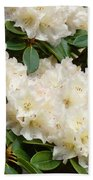 White Rhodies Landscape Floral Art Prints Canvas Baslee Troutman Beach Towel