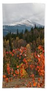 White River National Forest Autumn Panorama Beach Sheet