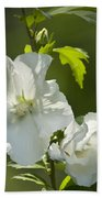 White Rose Of Sharon Squared Beach Towel